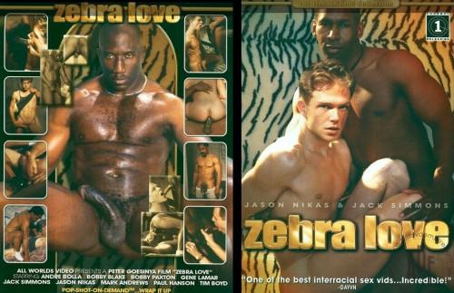 Channel 1 Releasing - Zebra Love