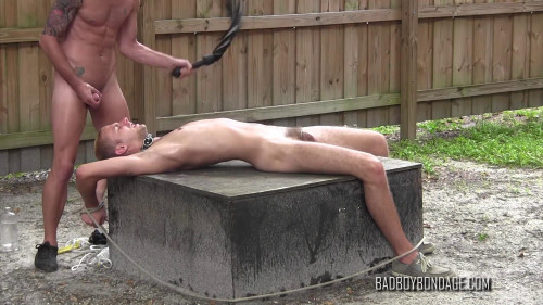 Lick Your Masters Balls!
