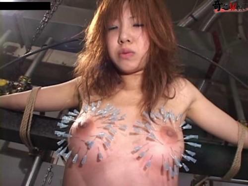 japan bdsm ddsc-002b