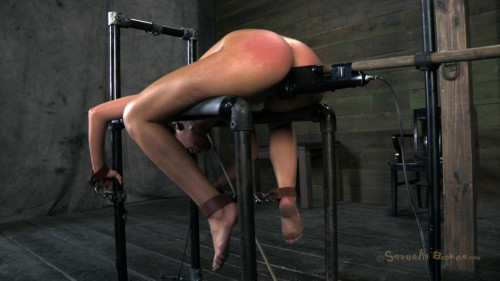 Orgasmed Out Of Her Mind Part 1 (Vicki Chase) SexuallyBrok BDSM