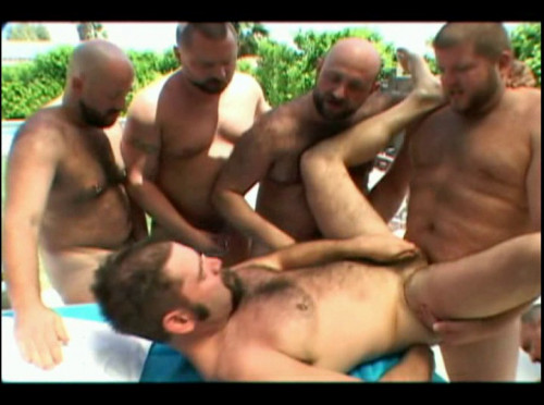 Bears In Heat Gay Movies