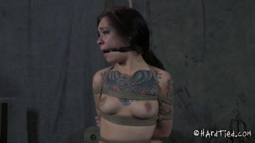 HdT- Bondage Juliette Black BDSM