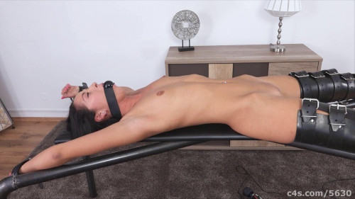 Bdsm HD Porn Videos Naked Gagged and Vibrated