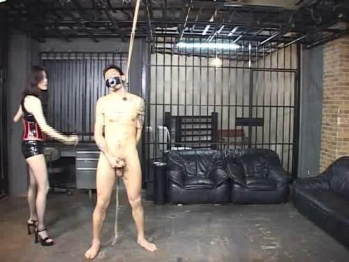 Please Forgive Me, My Queen Asians BDSM