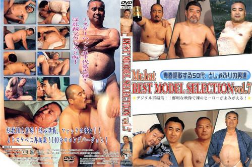 Best Model Selection Vol 7 Asian Gays