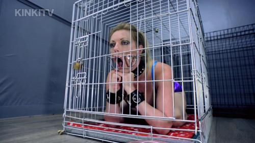 Petgirls Porn Videos Part 49 ( 15 scenes) MiniPack