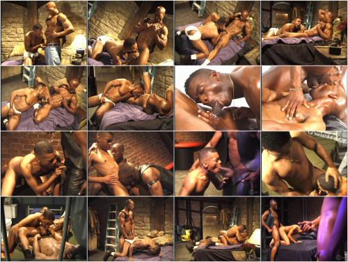 Best Black Dicks Collection Gay Retro
