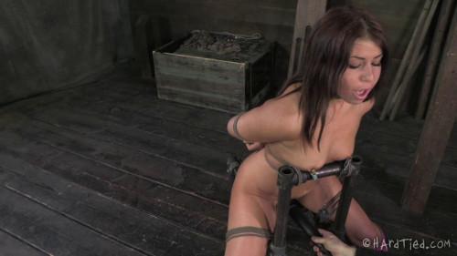 Mia Gold Tease Toy BDSM