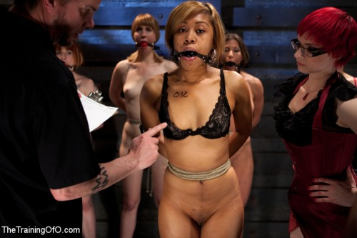 Lesbian 5 Slave Training Intake<br />Featured Trainer Claire Adams