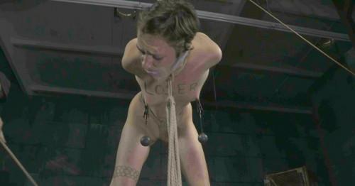 Real bdsm training – Mercy West, Abigail Dupree