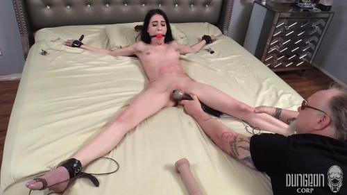Earning Her Keep BDSM