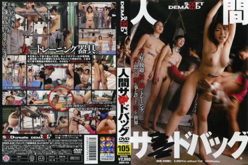 Asian Women Posing as Punching Bags. Various. Human Sandbags DVD 2011