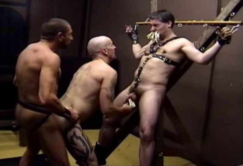 Kinkfest Collection