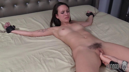 Been Caught Stealing part 3 BDSM