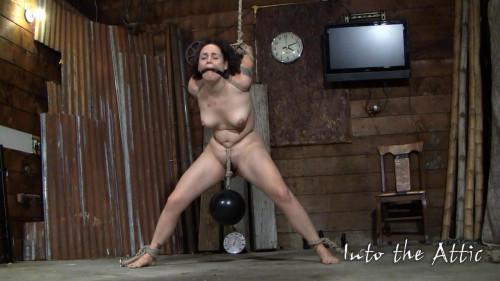 ZaydaJ extra pussy torture BDSM