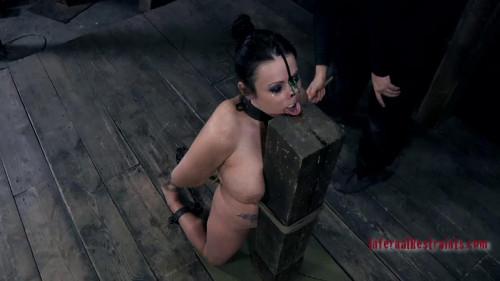 Bratty Whore - Moxxie Maddron BDSM
