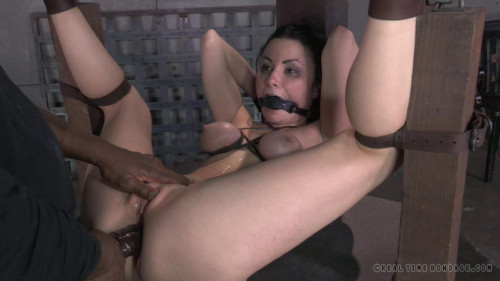Sexy brunette hair strictly gagged and tied then fucked right into an asshole by giant heavy rod