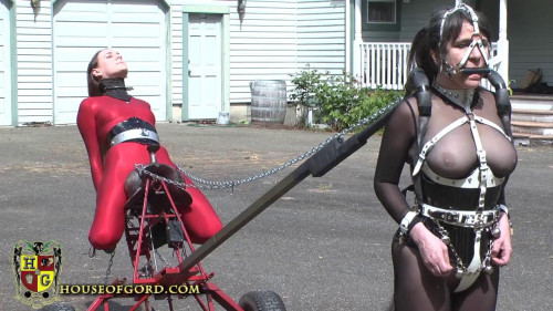 Ponygirl Powered