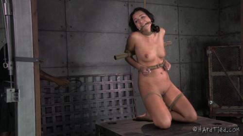 Punishing Paisley   Paisley Parker, Jack Hammer