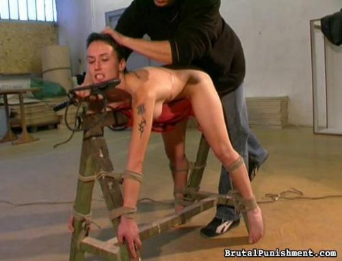 Brutal Punishment (2011-2012) Pack