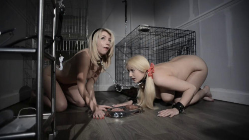 Petgirls Porn Videos Part 39 ( 6 scenes) MiniPack