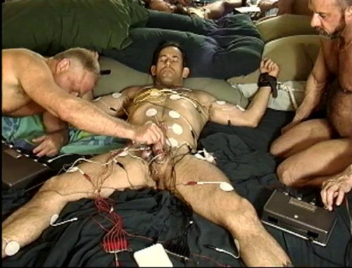 Special BDSM Collection