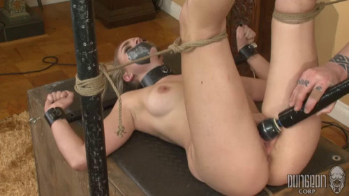 Super restraint bondage, domination and castigation for sexy blond