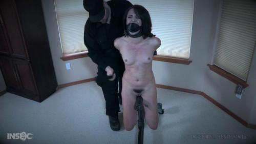 Malware BDSM
