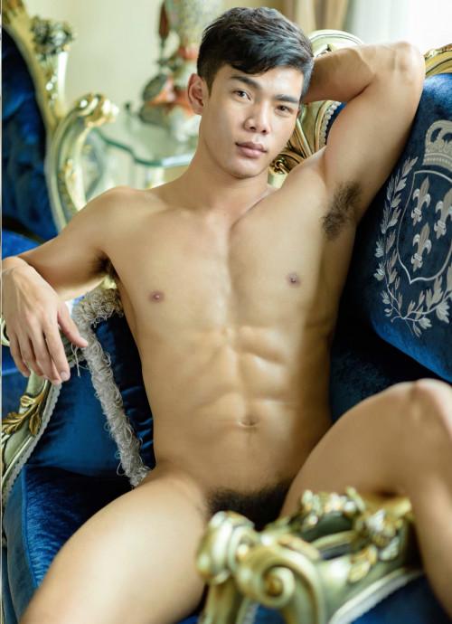 Vol. 11 Gay Pics