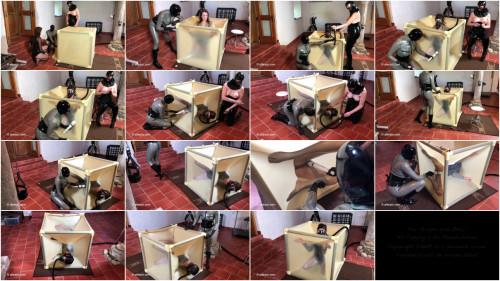Ultra Latex - Vacuum Bed Cube
