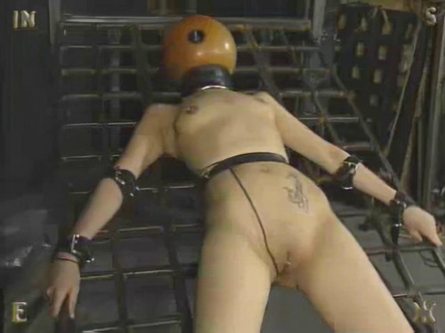 Insex - Model 731 Complete Pack (13 clips) [BDSM]