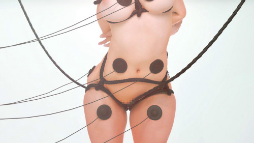 Milky Maid [2016,Sex toy,3DCG,Maid]