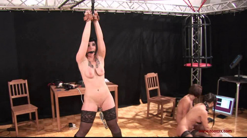 Toaxxx Perfect The Best Hot Excellent Super New Collection. Part 3. [2019,BDSM]