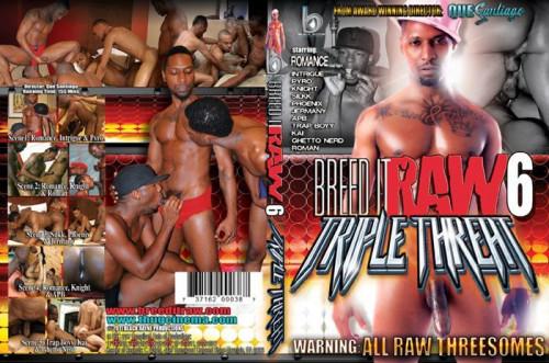 Breed It Raw Vol.6 - Triple Threat (2011)