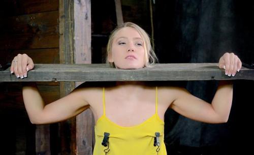 Beautiful blonde Aj Applegate stuck in stocks