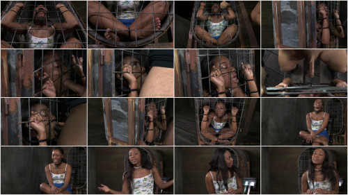 SexuallyBroken - March 24, 2014 - Chanell Heart - Matt Williams - Jack Hammer