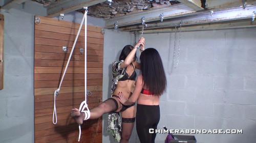 Chimera Bondage Gold Excellent Full Mega Sweet Collection. Part 3. [2019,BDSM]