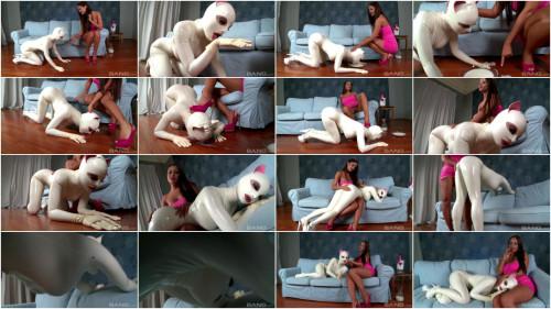 Latex Pets Untamed