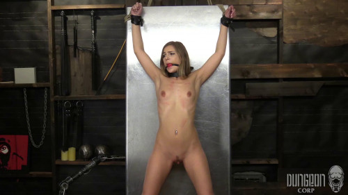 Dungeon Corp Vip Hot Unreal Cool Wonderfull Perfect Collection. Part 2. [2020,BDSM]