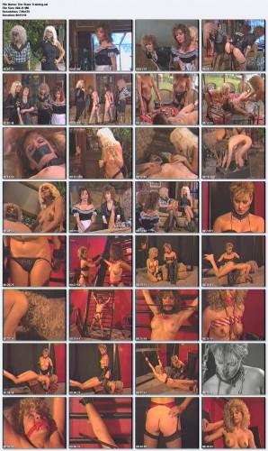 The Slave Training (1990)