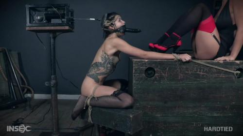 Intersec Interactive Inc - Hard Tied 47 Videos [BDSM]
