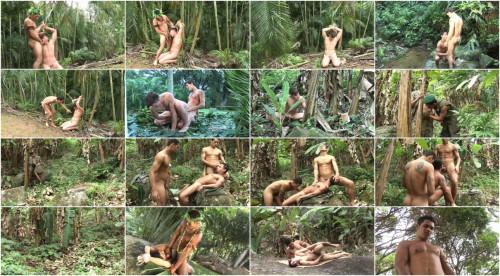 AMG Brasil - Amazonia (Capture)