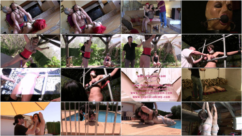 Toaxxx Perfect Excellent Super The Best Hot New Collection. Part 4.
