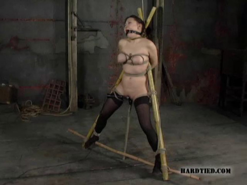 Hard Tied Mega New Exclusive Beautifull Unreal Cool Collection. Part 3. [2019,BDSM]
