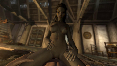 Skyrim Immersive Porn scene 1
