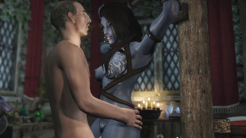 Skyrim Immersive Porn scene 13