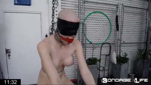 Bondage Life Rachel Greyhound Sweet Vip Full Hot Collection. Part 2. [2019,BDSM]