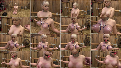 Tight tying, pain and predicament for pretty cutie HD 1080p