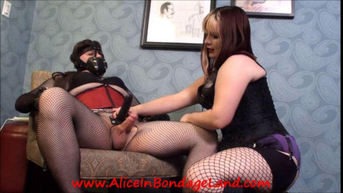 Alice in Bondage Land Full Pack up to August 2018, Part 8 [Femdom and Strapon]