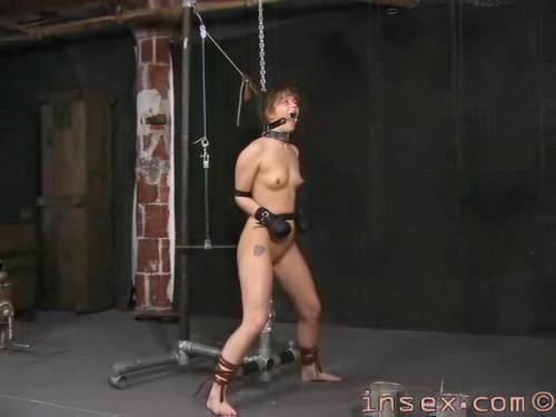 Insex - Tyler Scott Complete Pack (21 clips) [BDSM]